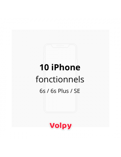 10 iPhone Fonctionnels (6s...
