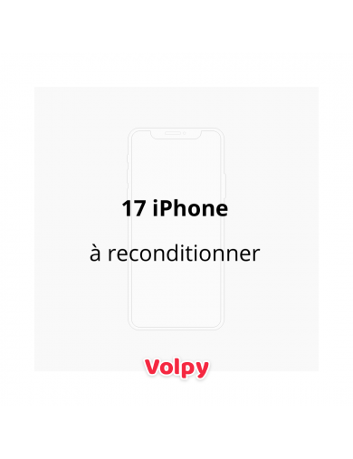 17 iPhone à reconditionner
